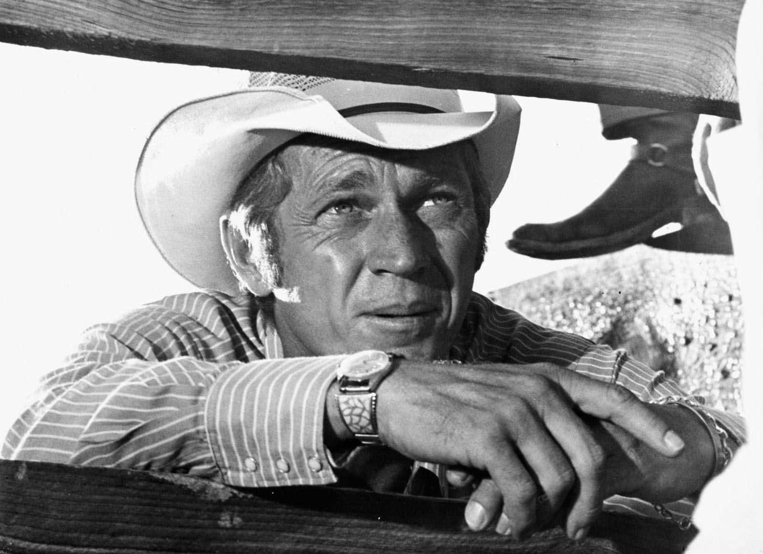 El Rey del Rodeo. Sam Peckinpah. Junior Bonner. Steve McQueen